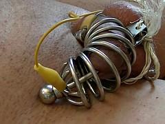 electro estim: cock-en-Metall-cage auto-dilated short