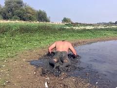 jons naked mud fun in 2016