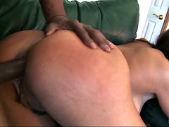 raylene anal fucked by a black cock doggy style